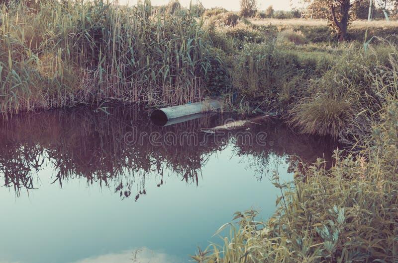 A água que jorra do esgoto à tubulação do rio/esgoto derrama para fora a fotos de stock