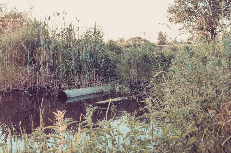 Água que jorra do esgoto ao conceito do rio/ecologia: água que jorra do esgoto ao rio toned fotografia de stock royalty free