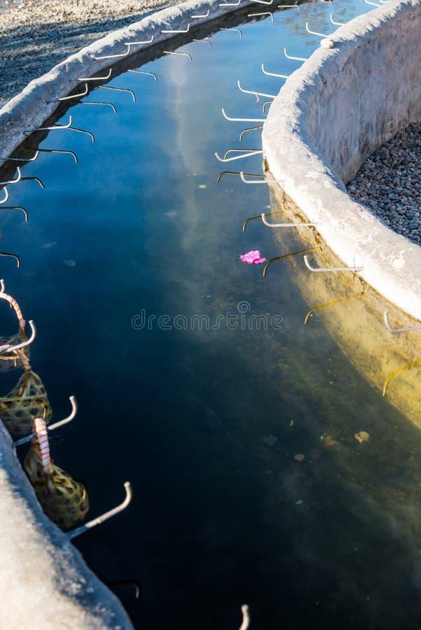 Água quente do subterrâneo na mola quente de Sankamphaeng fotos de stock