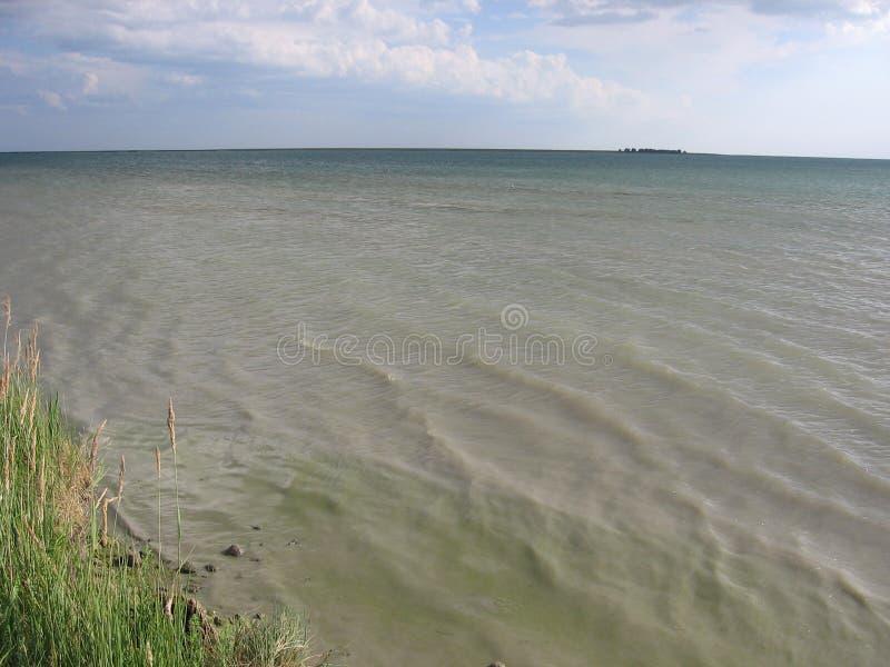 Água suja enlameada na suspensão contaminada terapêutica das cubas do lago foto de stock