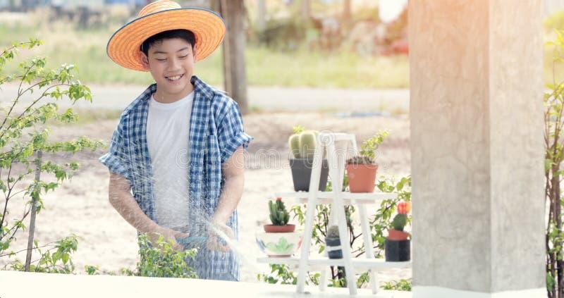 Água tailandesa asiática do menino na plântula pequena no jardim imagem de stock