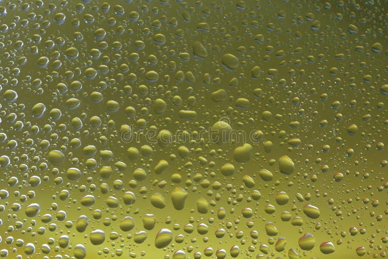 A água verde deixa cair o foco selecionado fundo imagem de stock