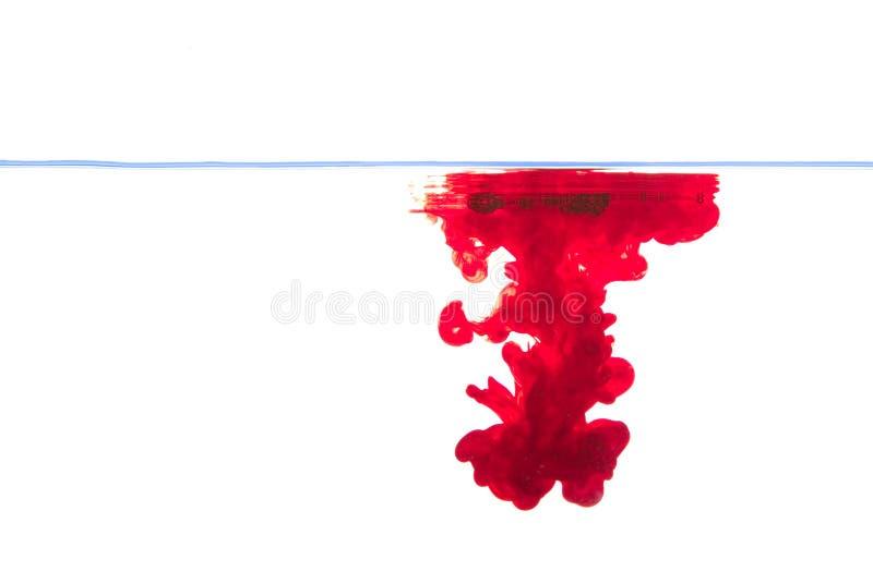 Água vermelha da tinta foto de stock