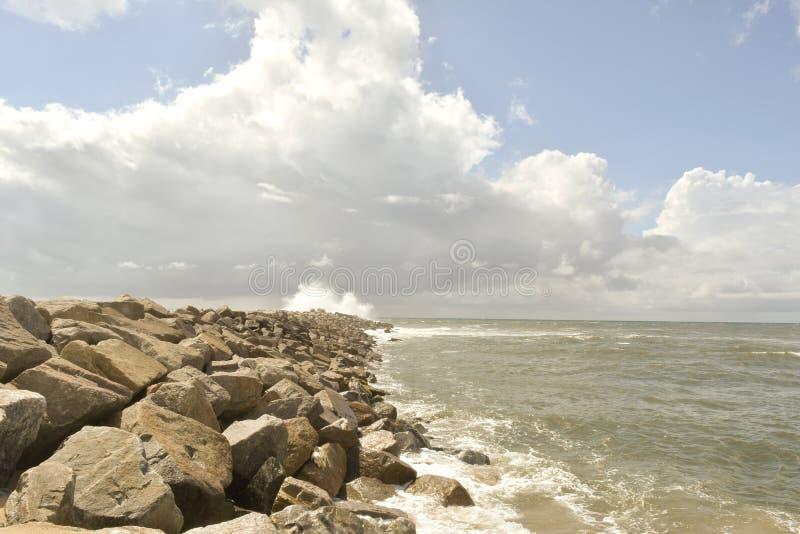 Água-viva com o mar descoberto e o céu nublado fotografia de stock royalty free