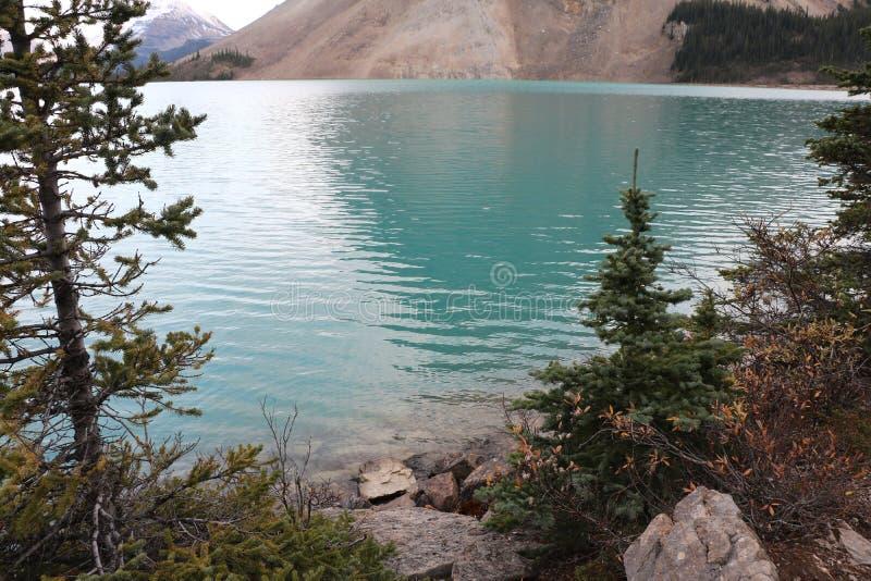 Águas azuis da geleira imagens de stock royalty free