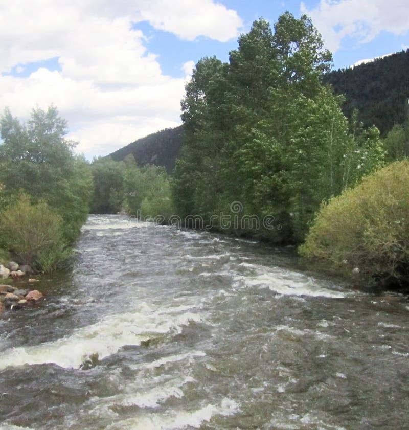 Águas brancas do rio nas molas de Idaho, Colorado das quedas fotos de stock royalty free