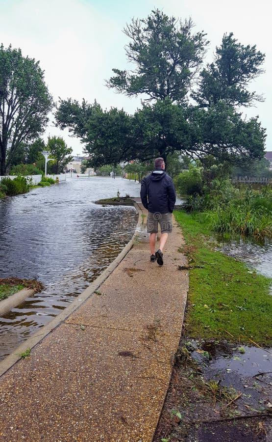 Águas da inundação de exame Manteo North Carolina do furacão do homem imagens de stock royalty free