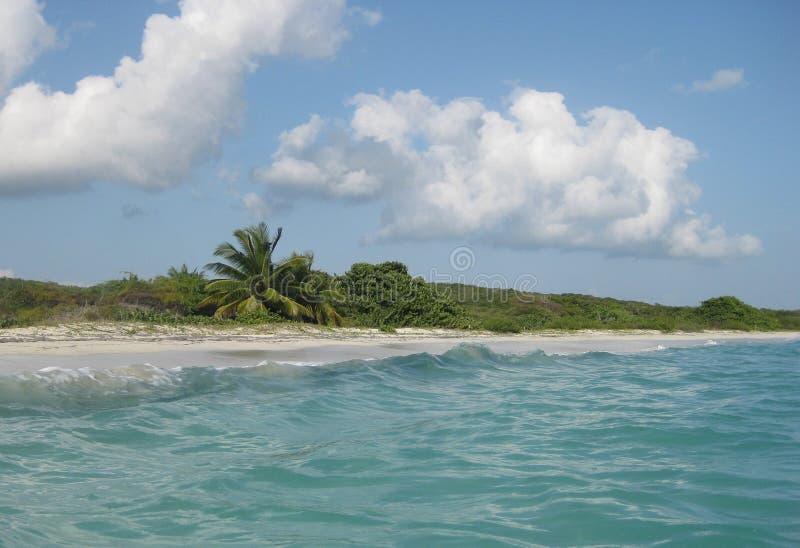 Águas de turquesa de Caraíbas imagens de stock