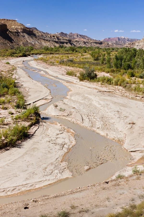 Águas enlameadas do rio de Paria foto de stock