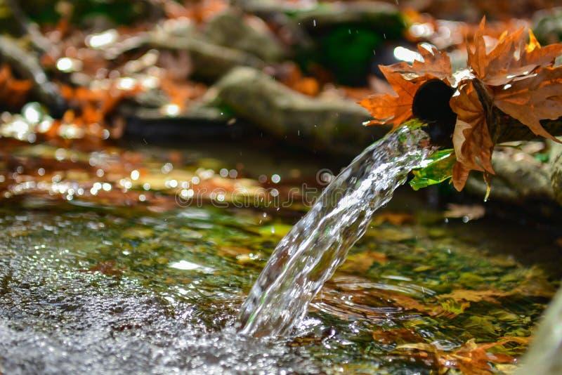 Águas naturais, frias e frescas foto de stock royalty free