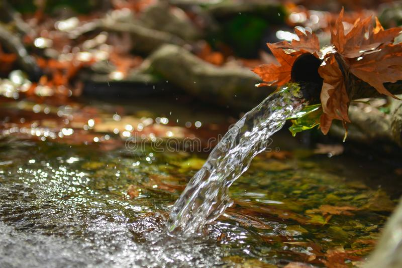 Águas naturais, frias e frescas fotografia de stock royalty free
