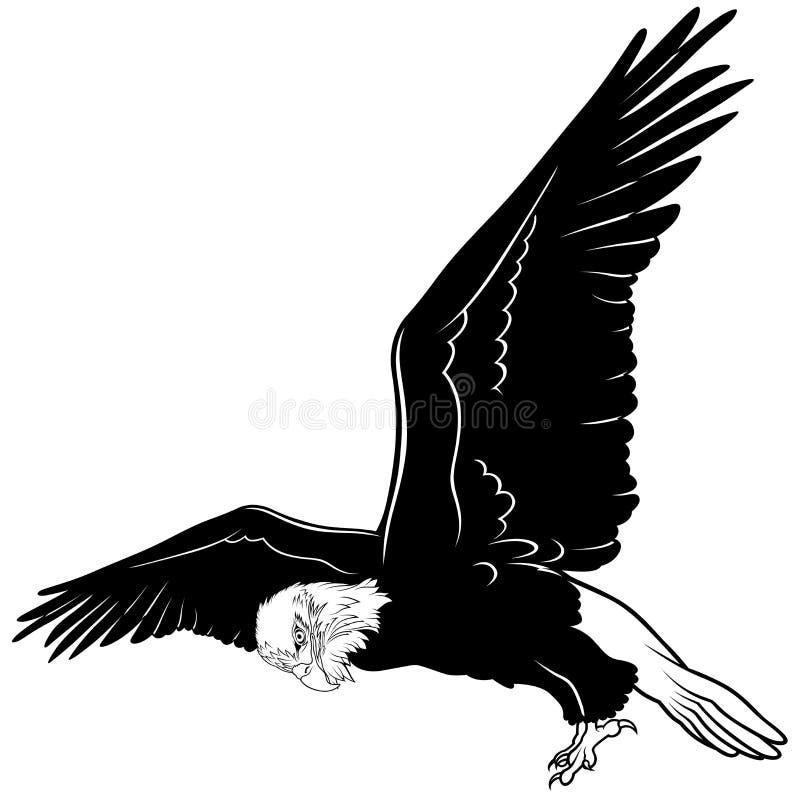 Águia americana do voo ilustração do vetor