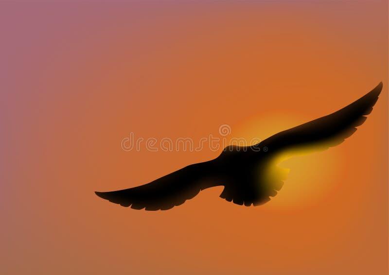 Águia de Sun ilustração do vetor
