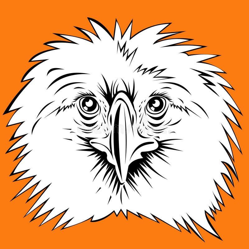 Águia filipino ilustração do vetor
