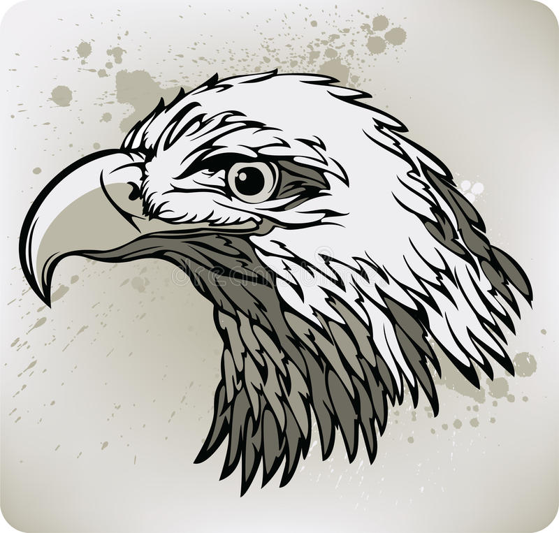 Águia. Ilustração do vetor. ilustração stock