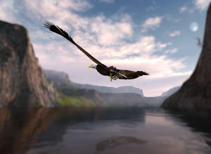 Águia que sobe sobre a água. foto de stock royalty free