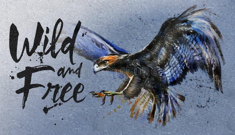 A águia voa na pintura colorida do céu, a selvagem e a livre da aquarela, predador grande do pássaro, projeto do t-shirt, rei das ilustração do vetor