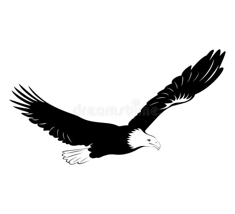 Águila calva ilustración del vector