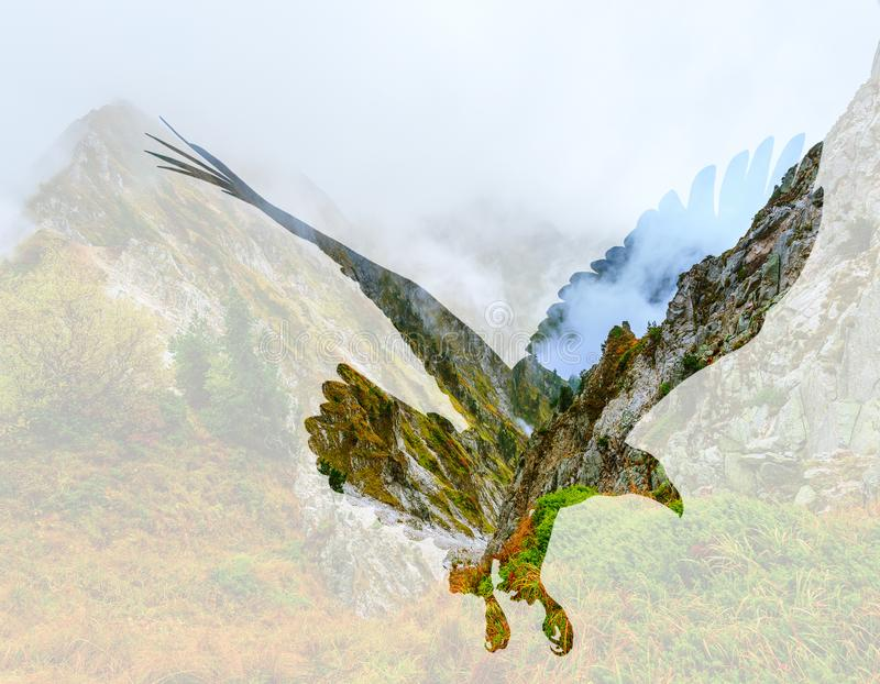 Águila calva en fondo del paisaje de la montaña imágenes de archivo libres de regalías
