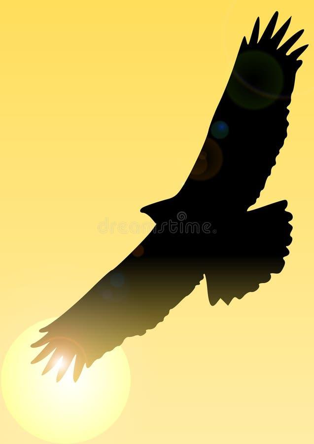 Águila en el cielo ilustración del vector