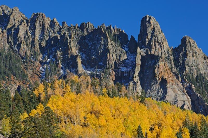 Álamos tembloses del otoño imagenes de archivo