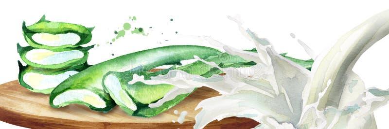 Áloe orgánico Vera y chapoteo del yogur Ejemplo dibujado mano de la acuarela ilustración del vector