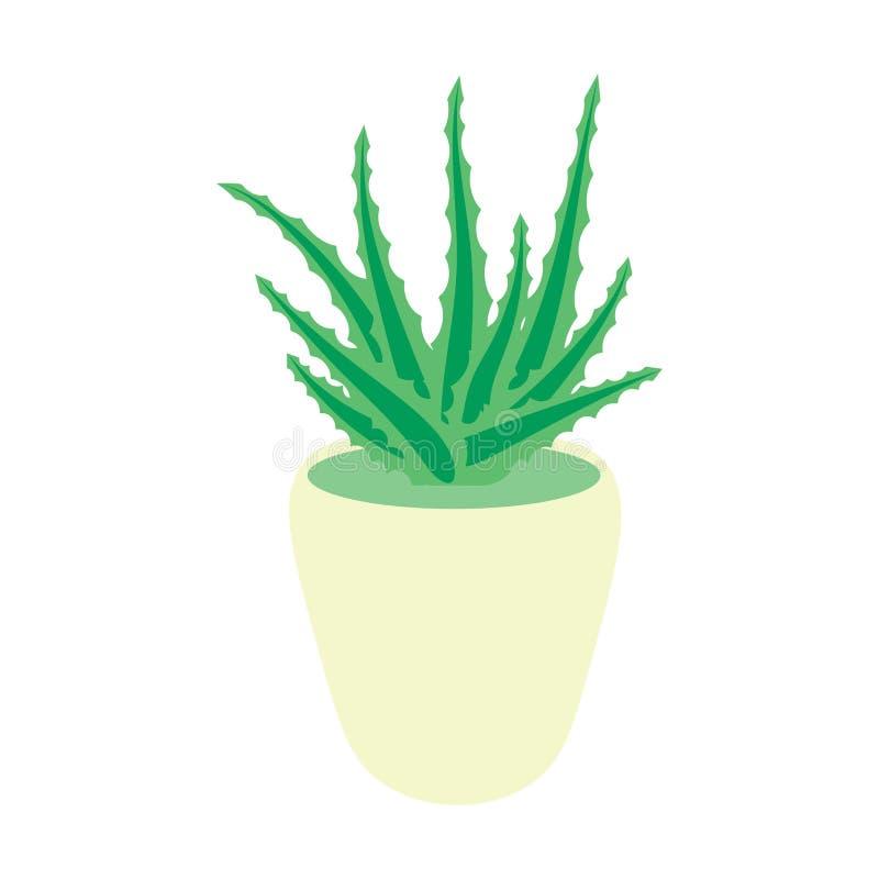 Áloe Vera arbusto en un pote, planta suculenta del pote, flor aislada libre illustration
