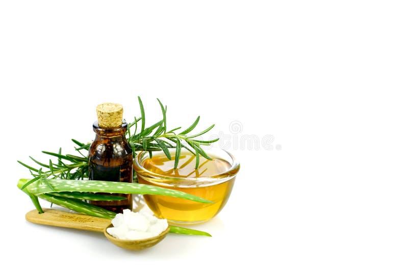 Áloe Vera, miel, romero, sal del mar y homeópata del aceite esencial imagenes de archivo