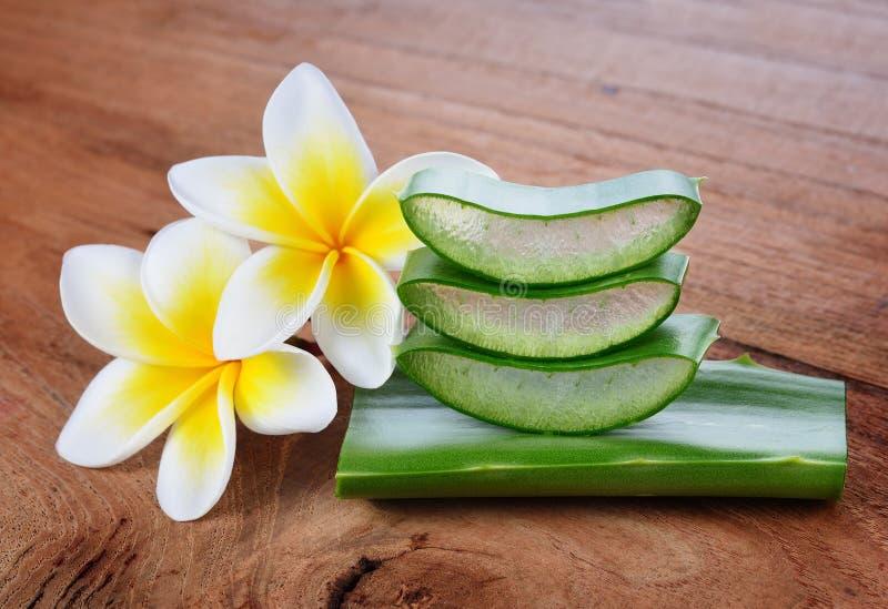 Áloe Vera y flor del frangipani fotografía de archivo libre de regalías
