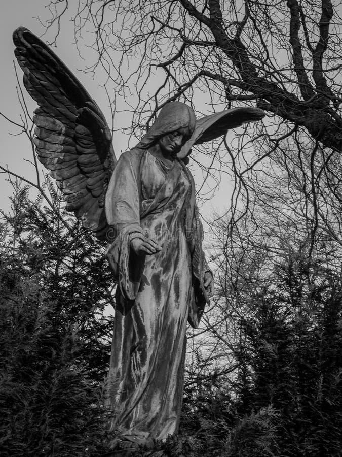 Ángel en cementerio fotos de archivo