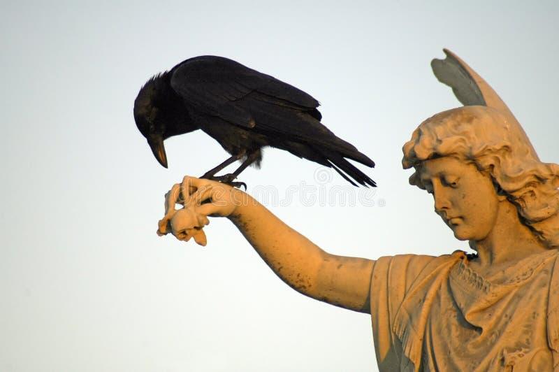 Ángel y cuervo imágenes de archivo libres de regalías