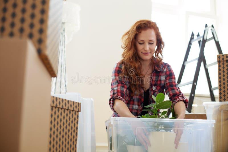 Ángulo bajo en la mujer sonriente que embala una planta en una caja durante rel fotos de archivo