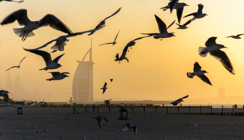Árabe del al de Burj en la puesta del sol imágenes de archivo libres de regalías