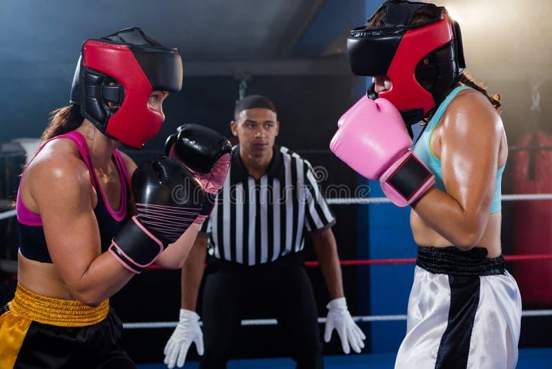 Árbitro masculino joven que mira a boxeadores de sexo femenino fotos de archivo libres de regalías