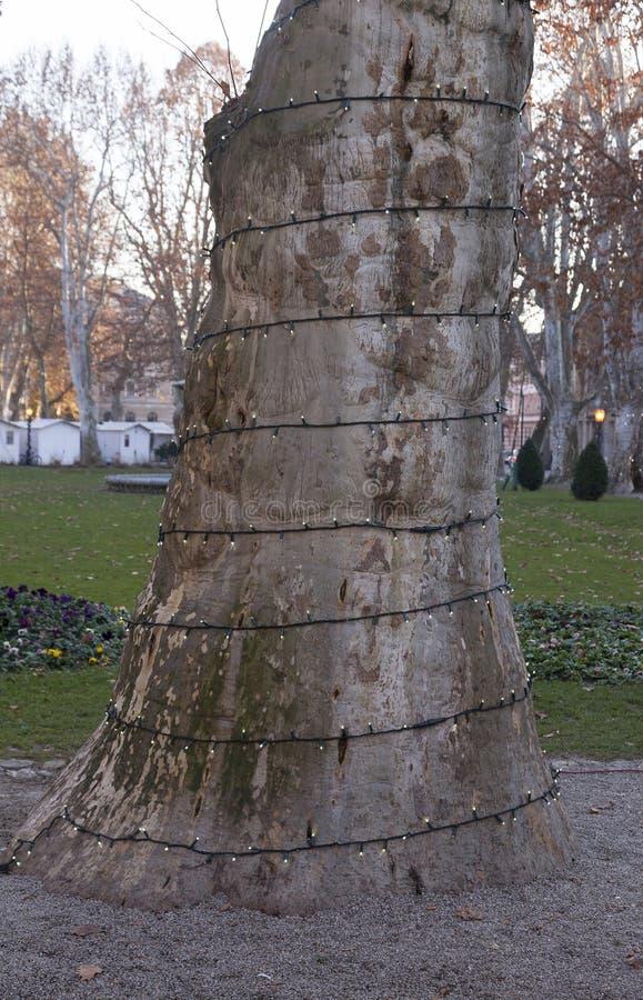 Árbol adornado fotos de archivo libres de regalías