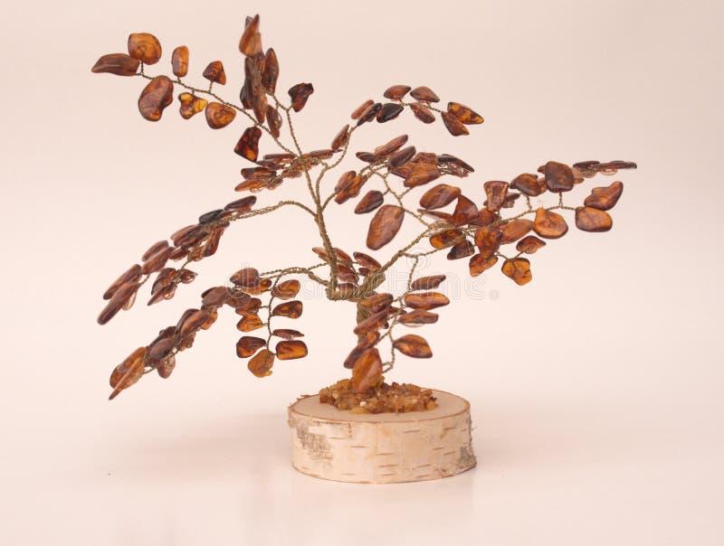 Árbol ambarino imagen de archivo libre de regalías