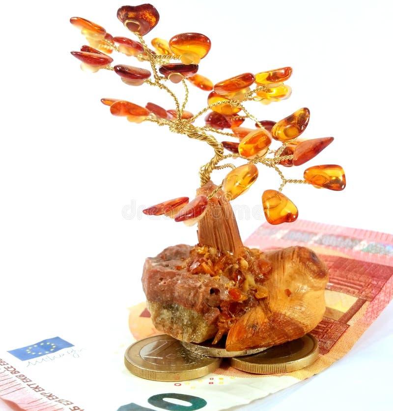 Árbol ambarino del dinero fotos de archivo