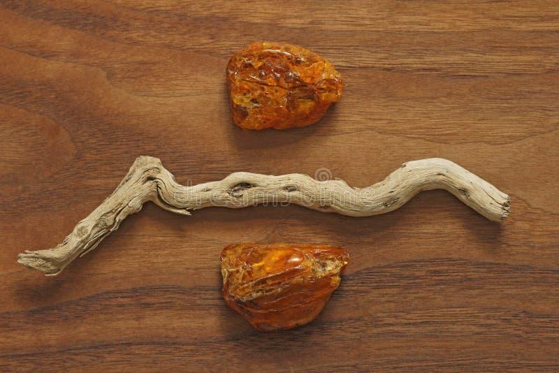 Árbol ambarino y seco Colección de piedras ásperas naturales en un natu fotografía de archivo