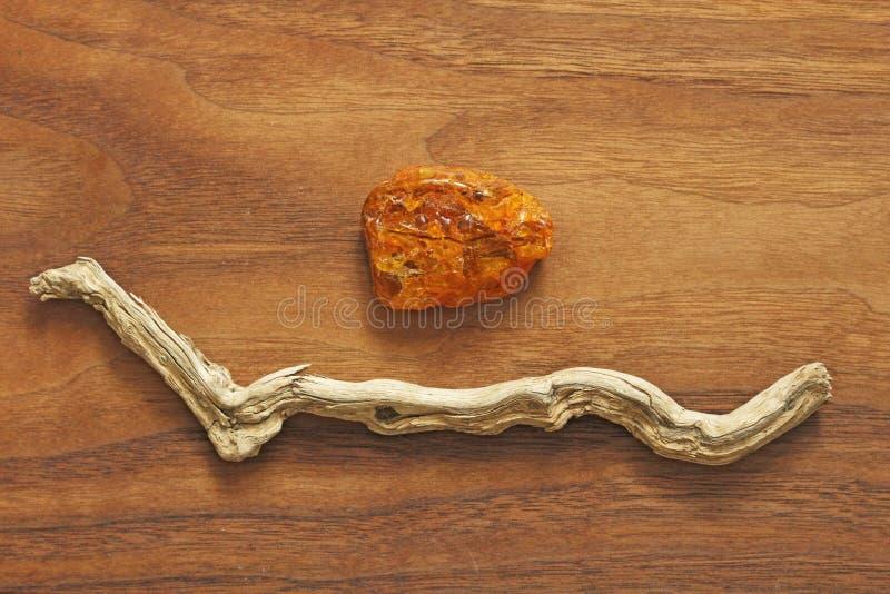Árbol ambarino y seco Colección de piedras ásperas naturales en un natu fotos de archivo