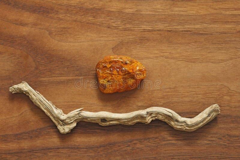 Árbol ambarino y seco Colección de piedras ásperas naturales en un natu fotos de archivo libres de regalías