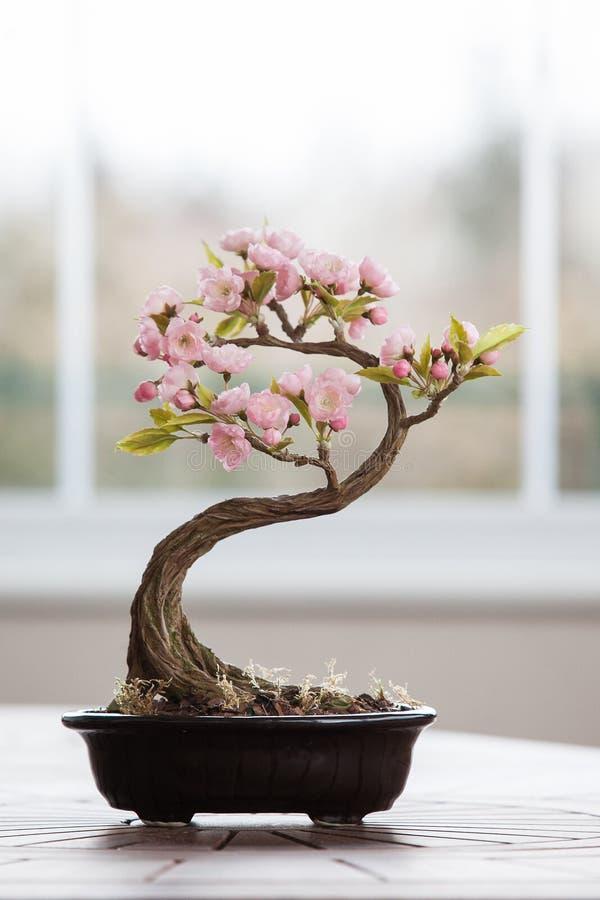 Árbol artificial de los bonsais con las flores fotos de archivo libres de regalías