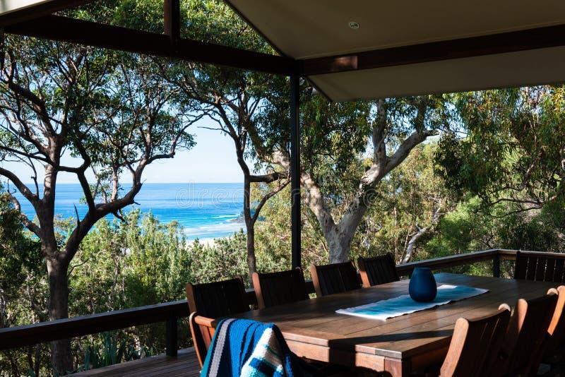 Árbol australiano de la cubierta y de eucalipto fotos de archivo