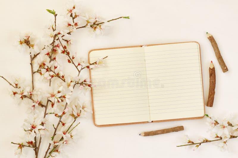 árbol blanco de las flores de cerezo de la primavera y cuaderno abierto imagen de archivo libre de regalías