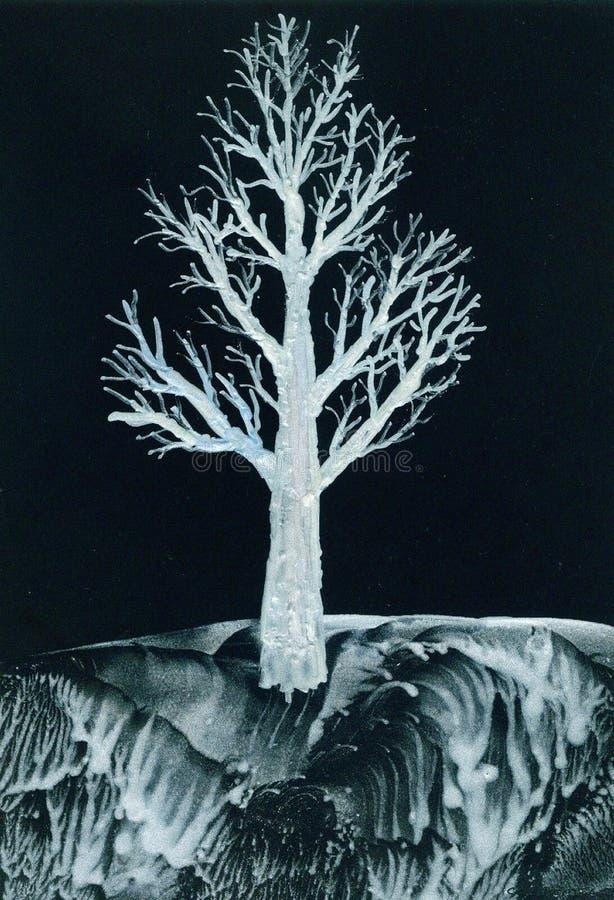 Árbol Blanco En La Noche Imagen de archivo