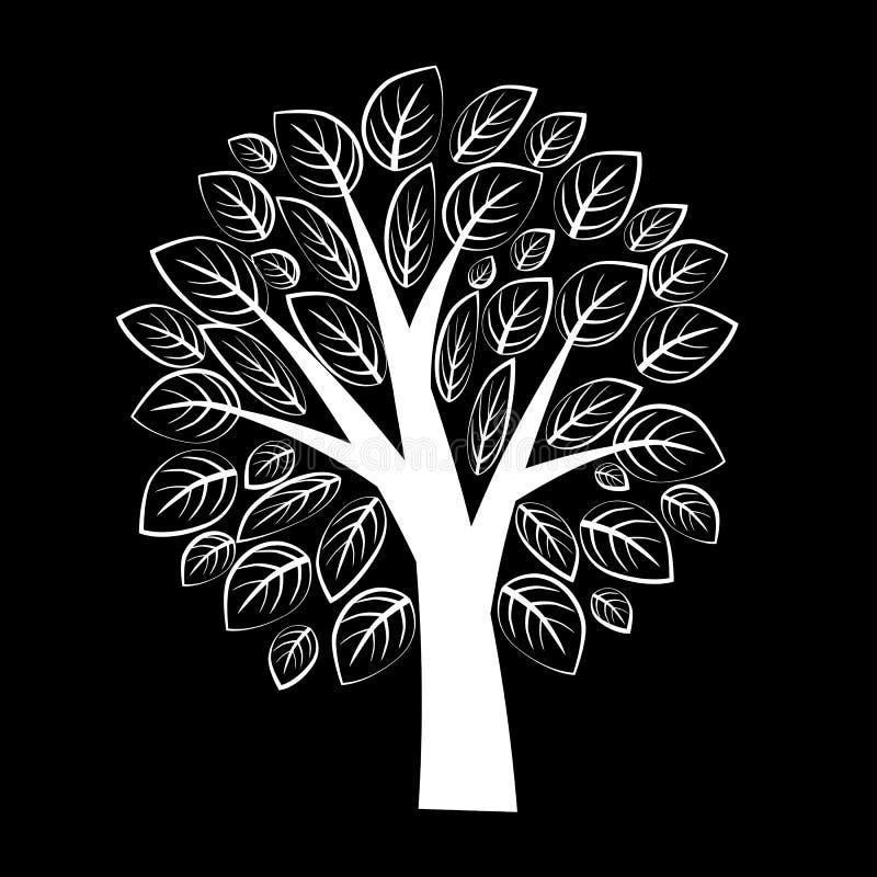Árbol blanco hermoso con las hojas en fondo negro foto de archivo