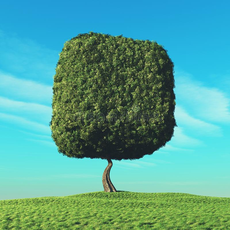 Árbol cúbico en el campo abierto ilustración del vector