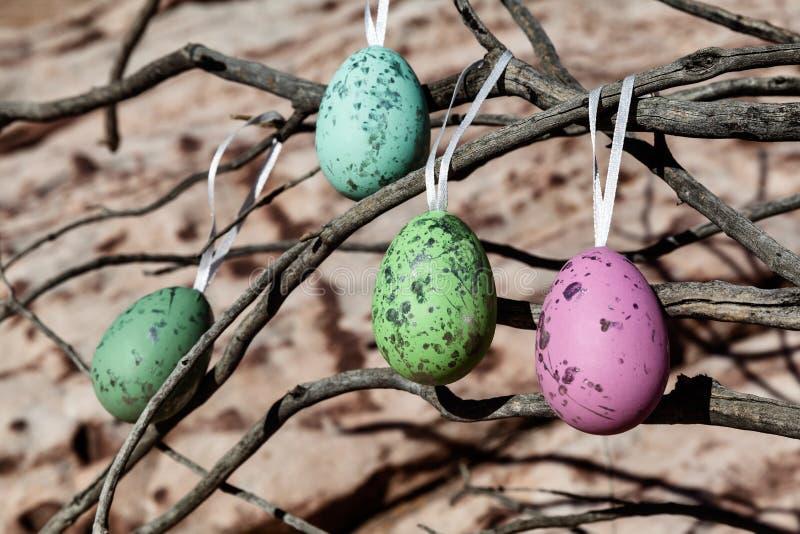 Árbol colorido de Ester Eggs Hanging On The en el desierto, los E.E.U.U. foto de archivo