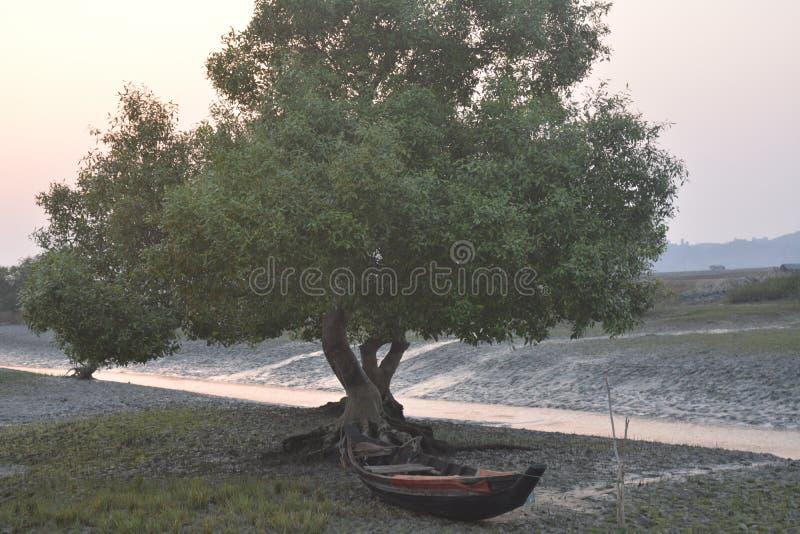 Árbol con el barco imagen de archivo