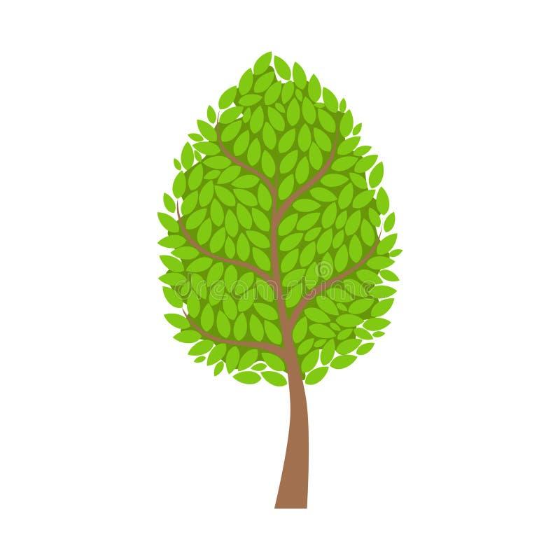 Árbol con el follaje verde enorme, elemento de las hojas de un paisaje Ejemplo colorido del vector de la historieta libre illustration