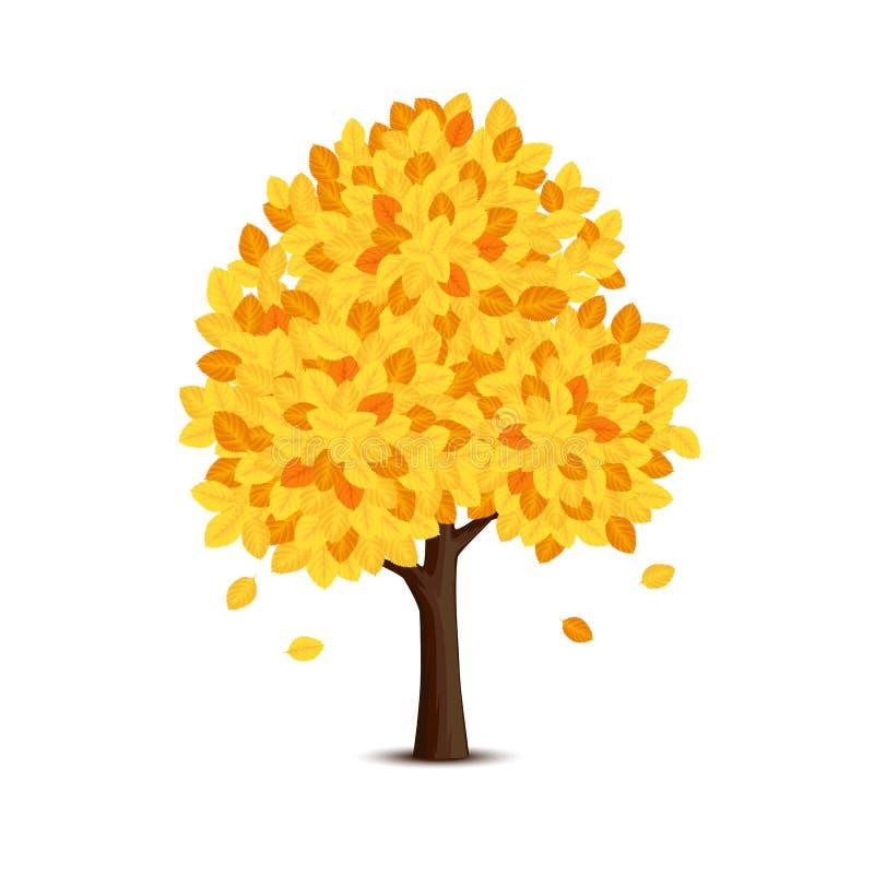 Árbol con las hojas amarillas stock de ilustración